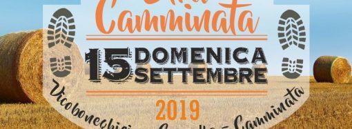 Stracamminata 2019